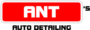 ant-responsive-logo-v6